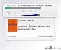 Ivoire bris� - Po�sie et Flamenco, Ludovic Pautier