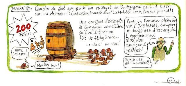 Fred Bernard, Chroniques de la vigne 5