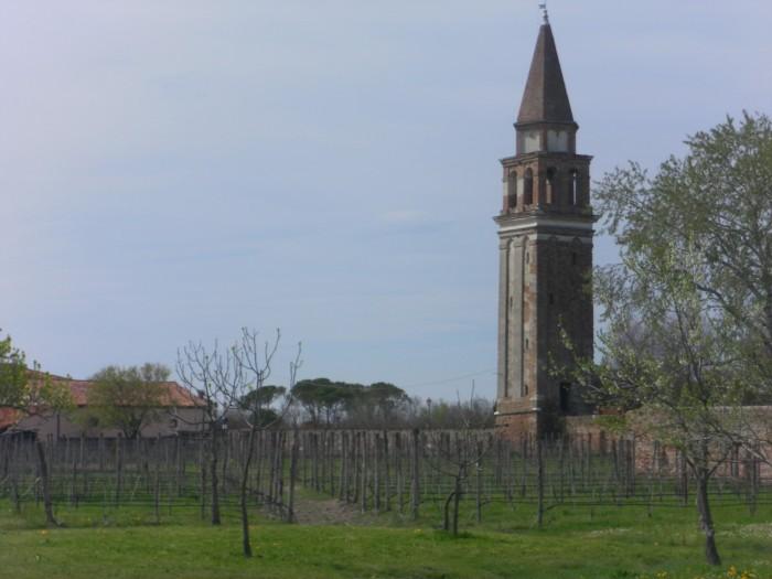 Vignoble de Mazzorbo
