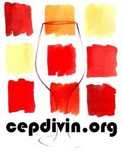 cepdivin-logo